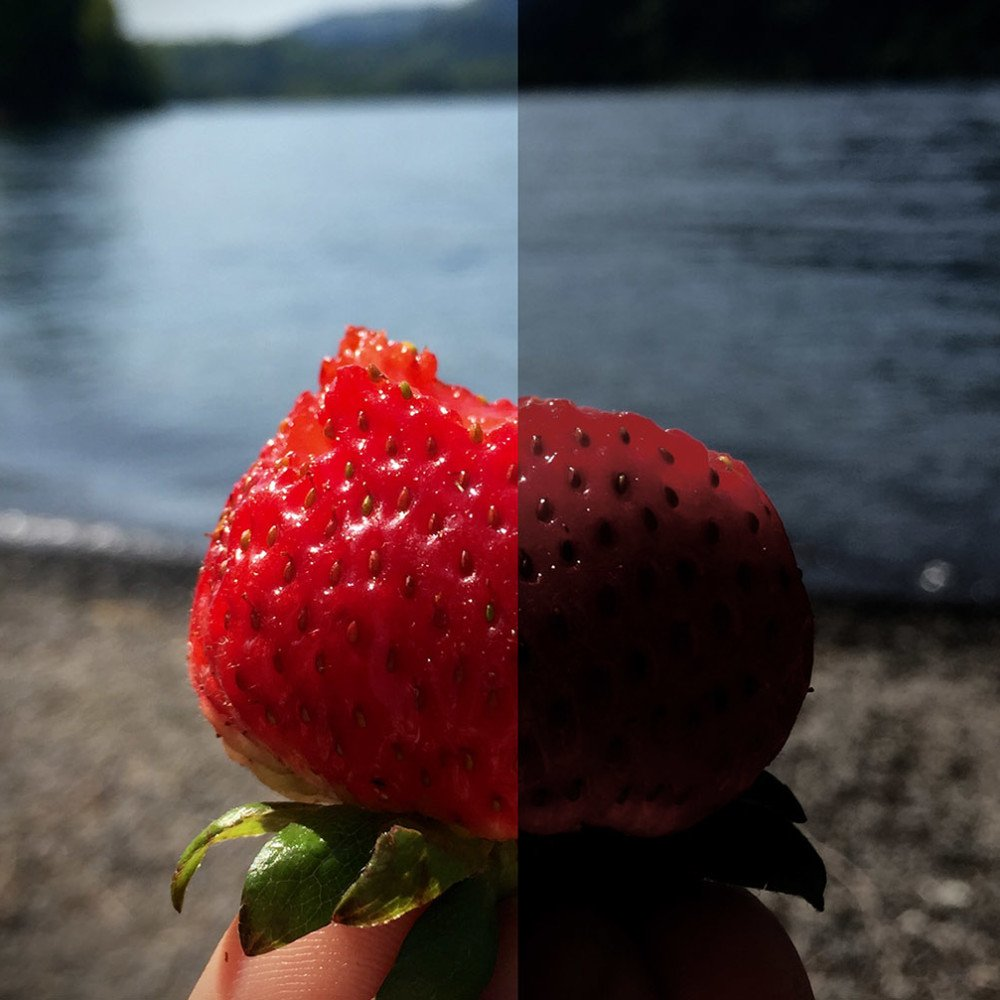 Photos Editing Strawberry